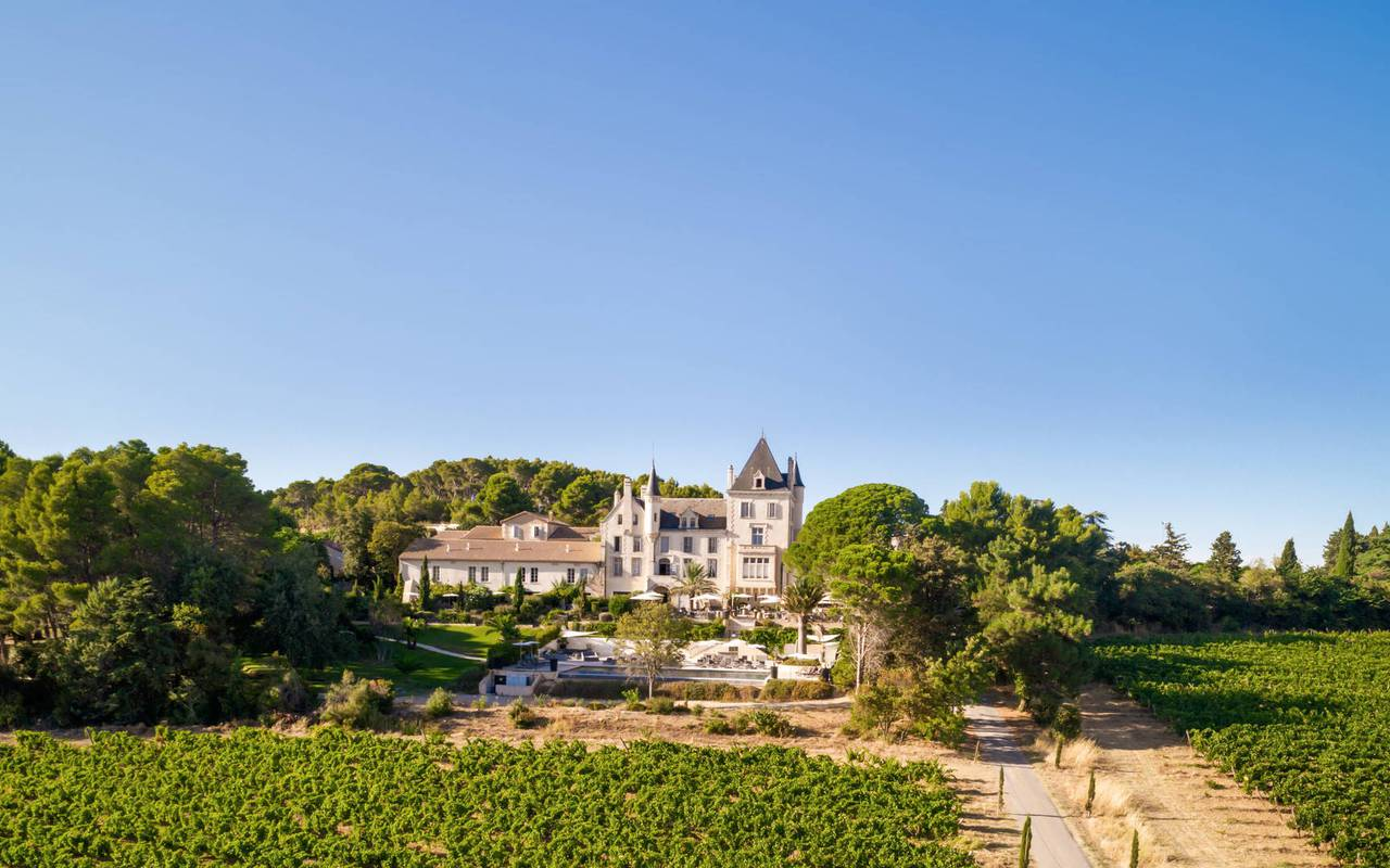 Aerial view of he estate, vineyards in France, Domaine & Demeure events.