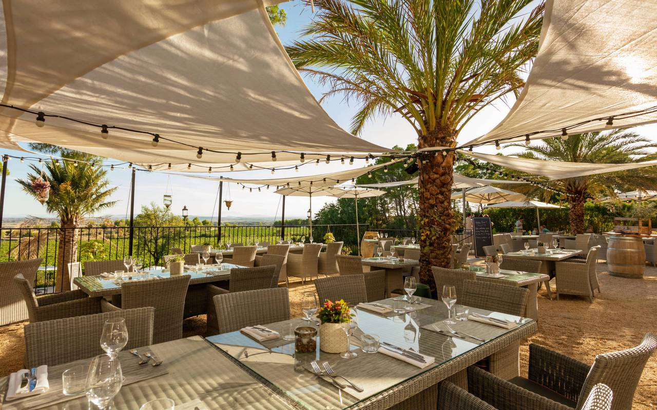 Restaurant terrace, meeting in Montpellier, Château les Carrasses