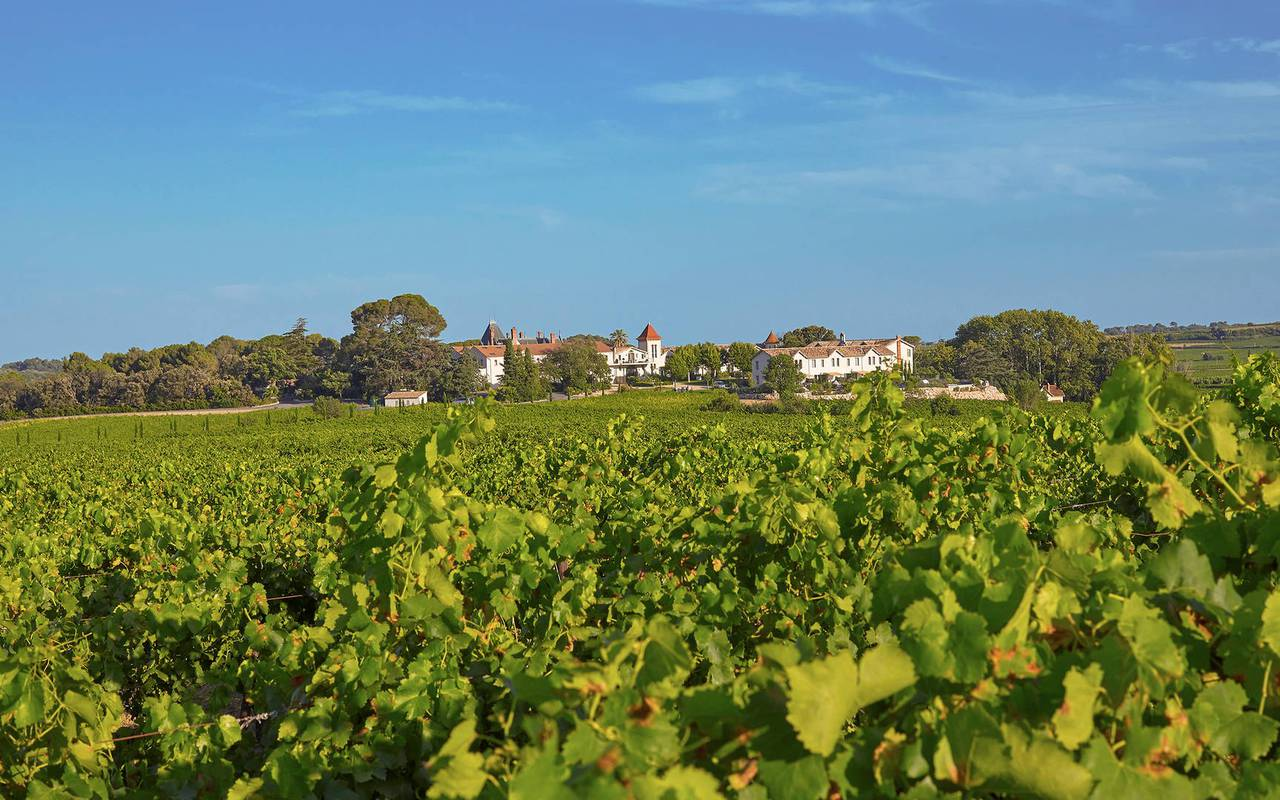View of the vineyards with the hotel in the background, conference France, Domaine & Demeure events.
