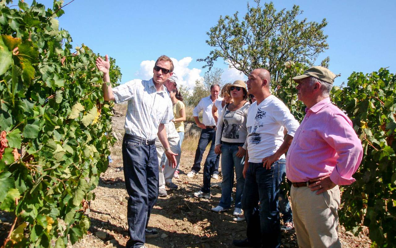 Group doing a tour in the vineyards, conference Montpellier, Domaine & Demeure Events.