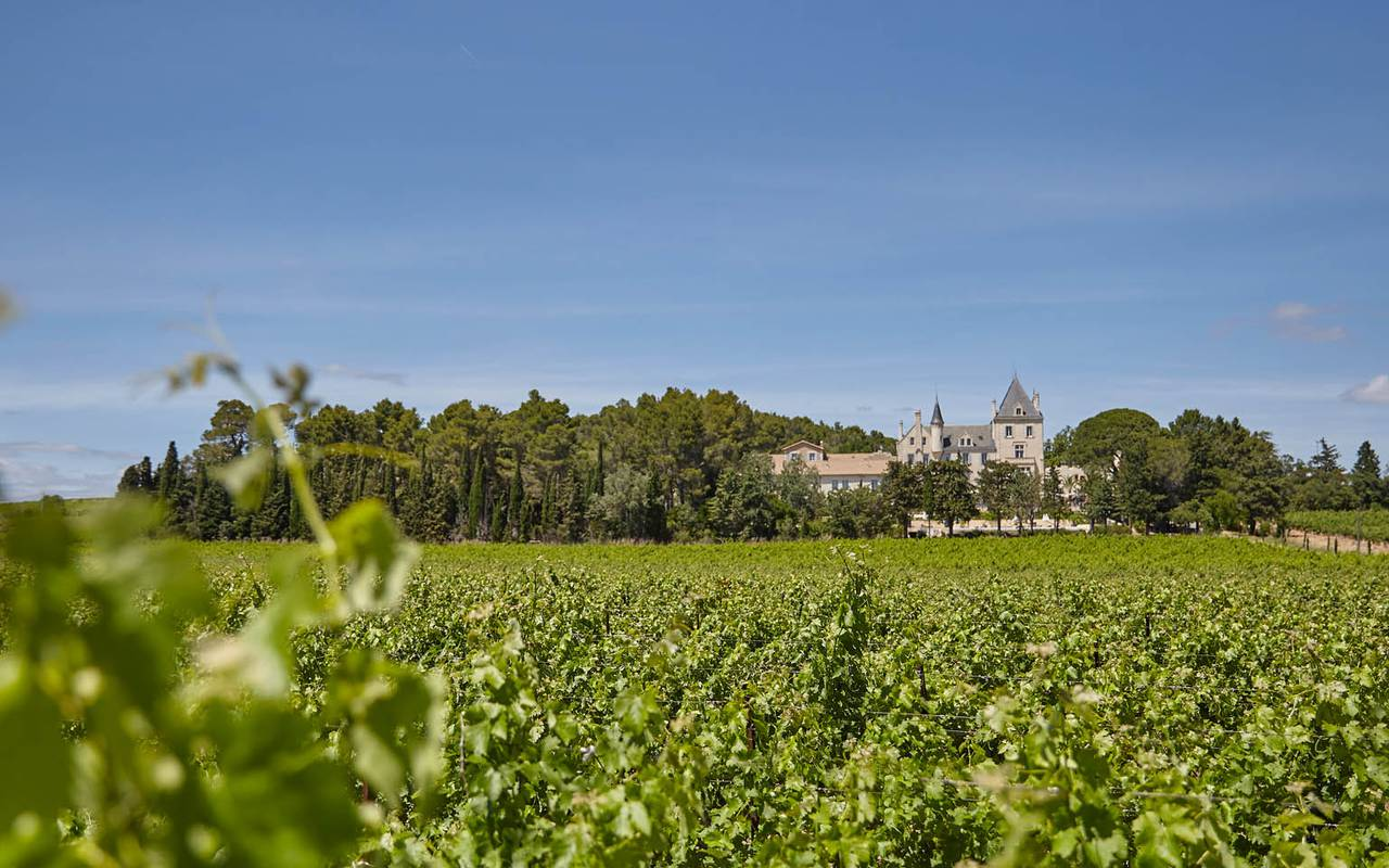 château in the vineyards, Languedoc Roussillon house rental, Domaine & Demeure