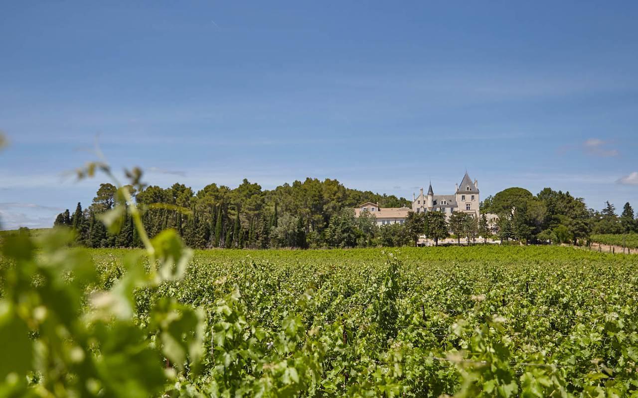château dans les vignes, location maison languedoc roussillon, Domaine & Demeure